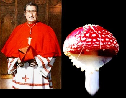 mushroompriest.jpg